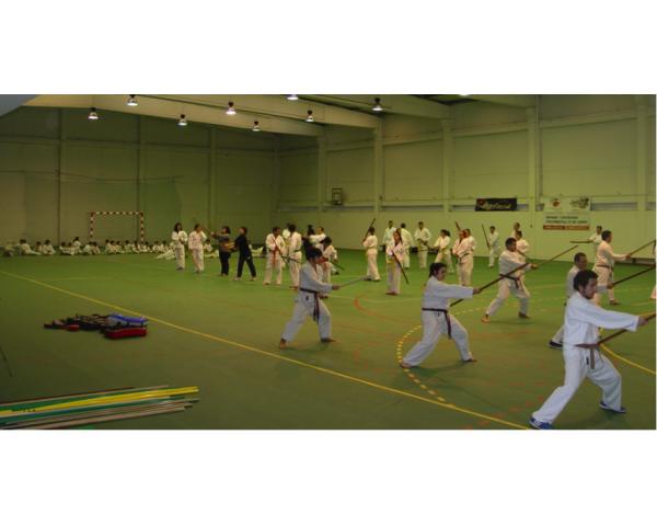 estagio karate medas